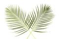 Пальмовое воскреченье